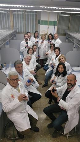 Los investigadores de la UGR que participan en el proyecto Virtuous