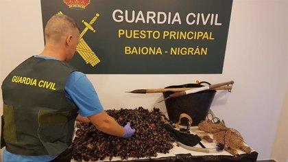 Detenido en Baiona un 'percebeiro' furtivo, al que también atribuyen amenazas a los vigilantes