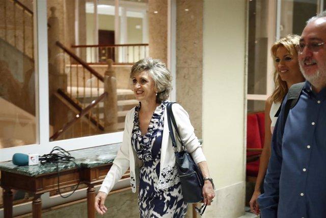 La ministra de Sanidad Consumo y Bienestar Social, María Luisa Carcedo  llega al Congreso de los Diputados para su comparencia en Comisión de Sanidad en relación con el brote de listeriosis originado en Andalucía.