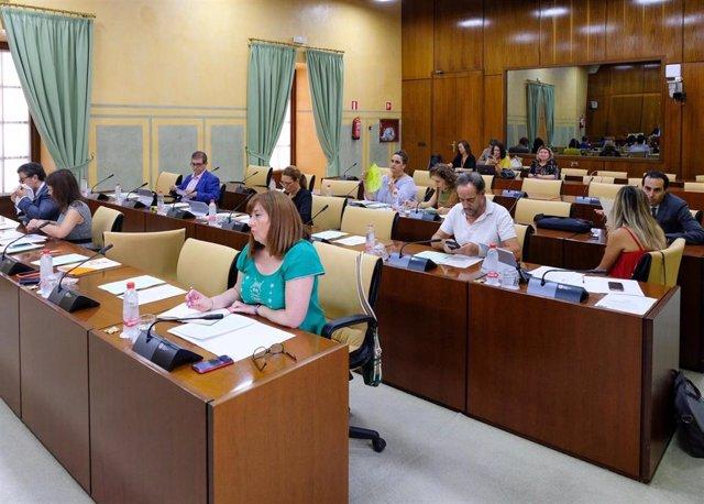 Imagen de la reunión de este jueves de la Comisión de Igualdad del Parlamento de Andalucía.