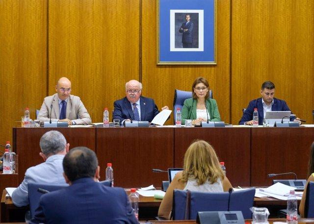 Jesús Aguirre en la Comisión de Salud