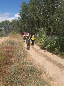 Bomberos y Guardia Civil trabajan en la extinción de un incendio junto al Ebro entre Lodosa y Sartaguda