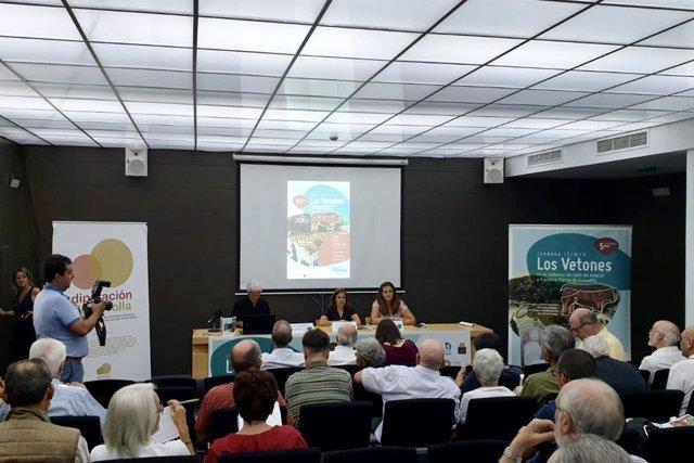Jornada sobre el patrimonio vetón del norte de Cáceres