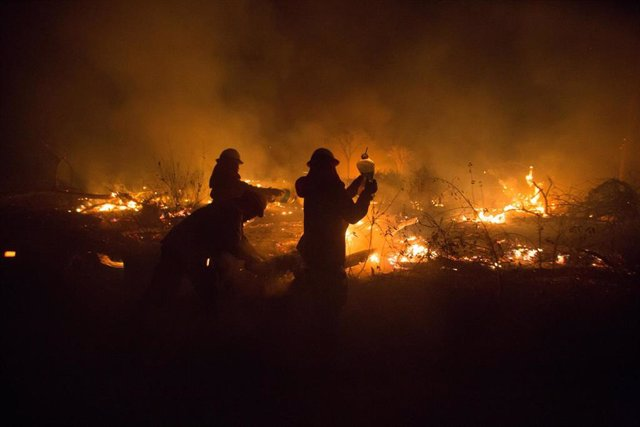 28 August 2019, Bolivia, Santa Rosa de Tucabaca: Firefighters extinguish fires in the Chiquitania Forest in Santa Rosa de Tucabaca with water from a plastic canister. The emergency forces in eastern Bolivia continue to contain the devastating Amazon rainf