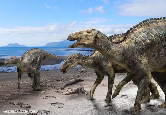 Reconstrucción de 'Kamuysaurus japonicus'