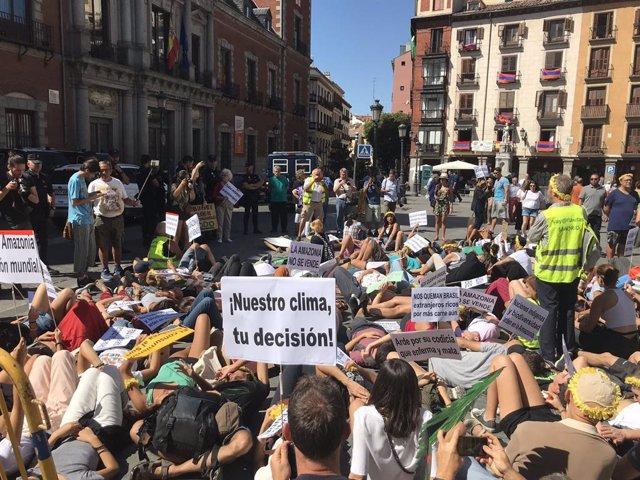 Organizaciones ecologistas piden al Gobierno que retire su apoyo al tratado con