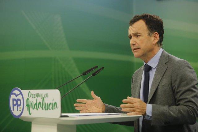 El vicesecretario de Sectores Productivos del PP-A, Pablo Venzal.