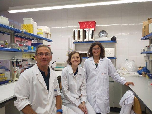 Los investigadores Vicent Casadó, Estefanía Moreno y Verònica Casadó-Anguera, del Grupo de Investigación de Neurobiología Molecular de la Facultad de Biología, el IBUB y el CIBERNED.