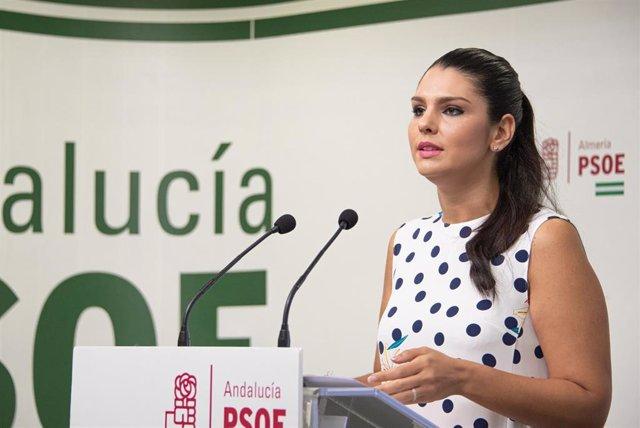 La parlamentaria del PSOE Noemí Cruz en rueda de prensa