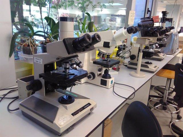 Laboratori de l'Hospital Vall d'Hebron de Barcelona