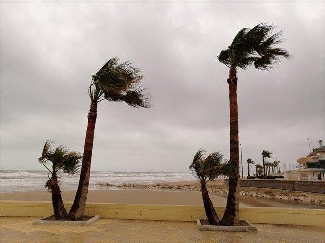 Un temporal de viento se deja notar en una playa