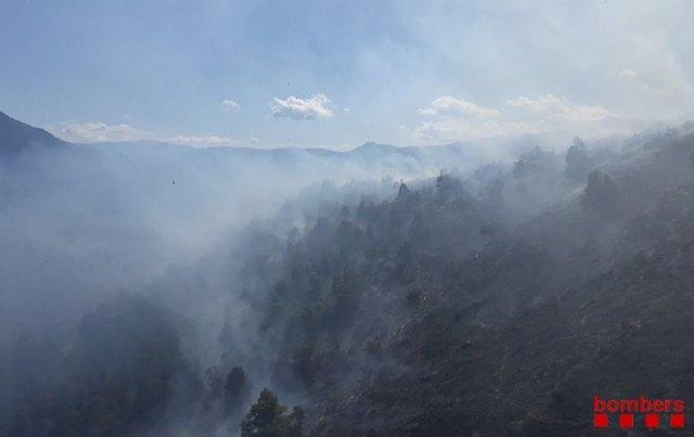 Flanc esquerre i flanc dret de l'incendi en el Serrat d'Escobedo (Lleida).