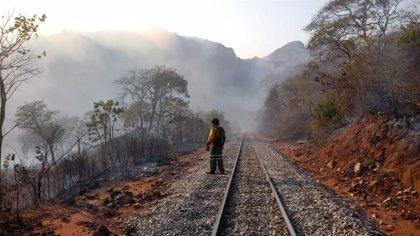 Bolivia.- Críticas a Evo Morales por su gestión de los incendios a solo mes y medio de las elecciones