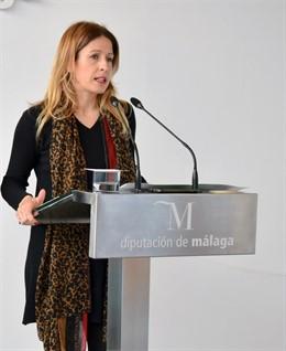 Málaga.- El PSOE critica que el PP solo presenta mociones en Diputación para tratar temas que son del Gobierno central