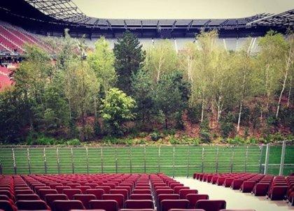 Un inquietante bosque crece dentro de un estadio de fútbol en Austria