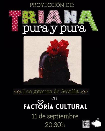 """La factoría cultural del Polígono Sur cierra su """"verano de cine"""" con el documental flamenco Triana Pura y Pura"""