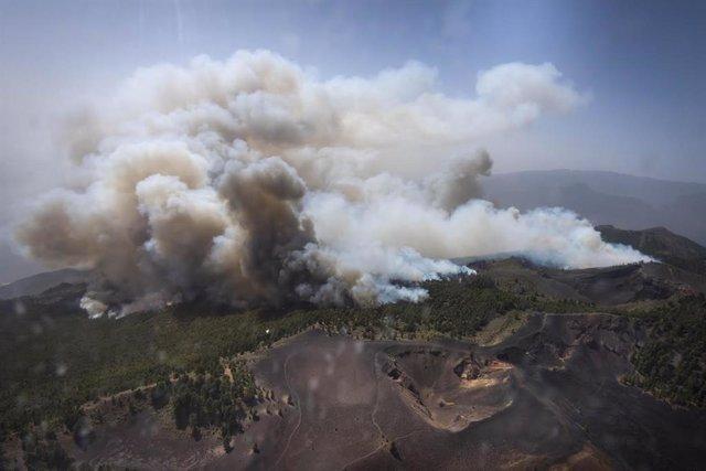 Incendios.- El Gobierno invertirá un millón de euros en restaurar la zona quemad