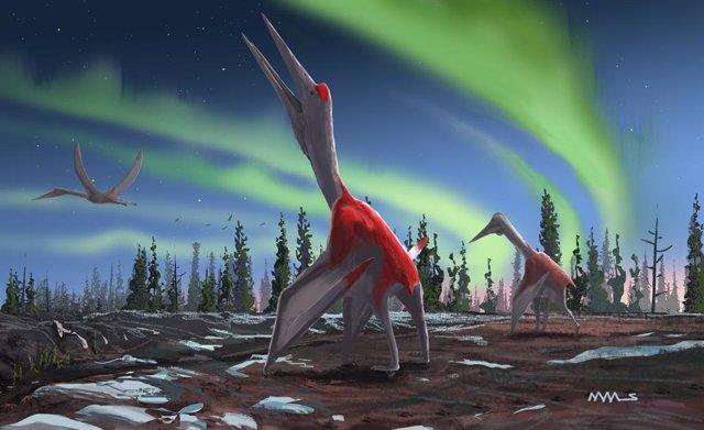 Conoce a Cryodrakon boreas, un gigante volador que medía diez metros