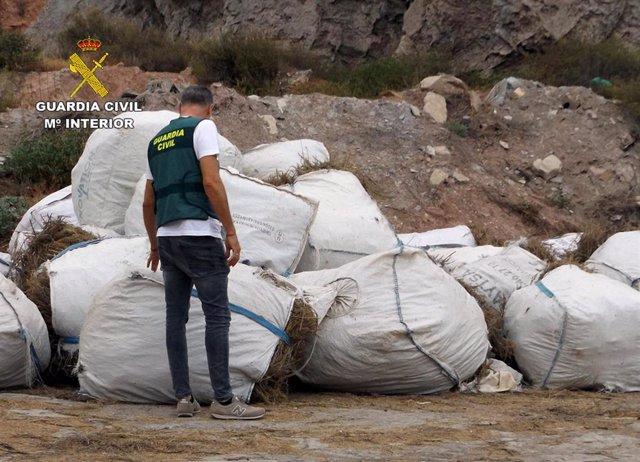 Un agente de la Guardia Civil junto a las toneladas de romero que habían sido sustraidas en Lorca