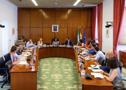 El primer Pleno del periodo de sesiones aborda la listeriosis, la financiación y la reelección de Maeztu como Defensor