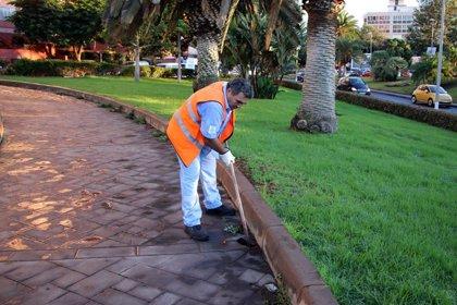 El Ayuntamiento de Santa Cruz invierte más de 100.000 euros en productos y materiales para mejorar parques y jardines
