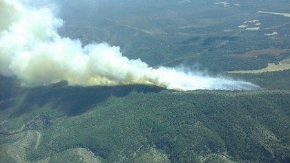 Controlado el incendio de Monteagudo de las Salinas