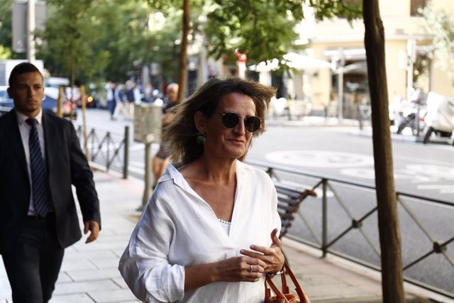 La ministra de Transición Ecológica en funciones, Teresa Ribera, a su llegada a la reunión de la Comisión Ejecutiva Federal del PSOE.