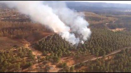 Extinguido el incendio forestal declarado el pasado sábado en El Ronquillo (Sevilla)