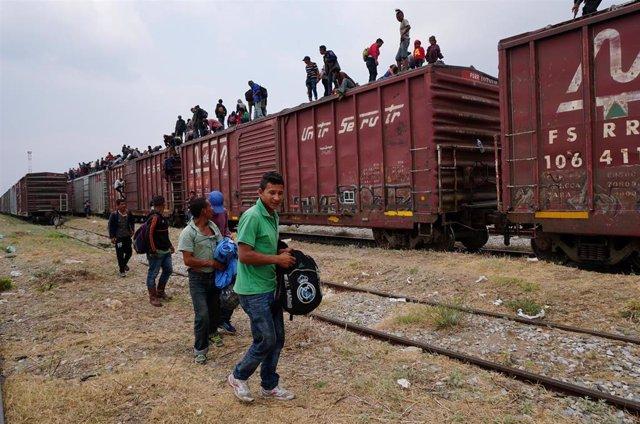 Migrantes de Centro América en un tren rumbo a Estados Unidos