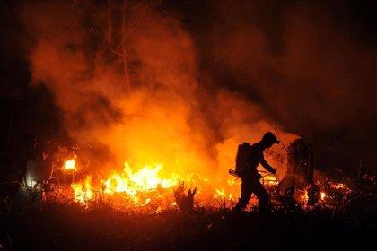 Miles de personas rezan para que llueva en Borneo y Sumatra para acabar con los graves incendios