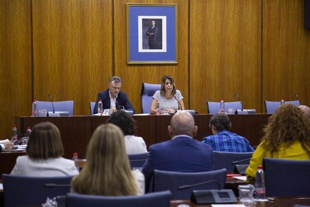 La secretaria general del PSOE-A, Susana Díaz (d), junto al portavoz parlamentario del PSOE-A, José Fiscal (i), durante su intervención en la reunión del Grupo Socialista. En el Parlamento de Andalucía