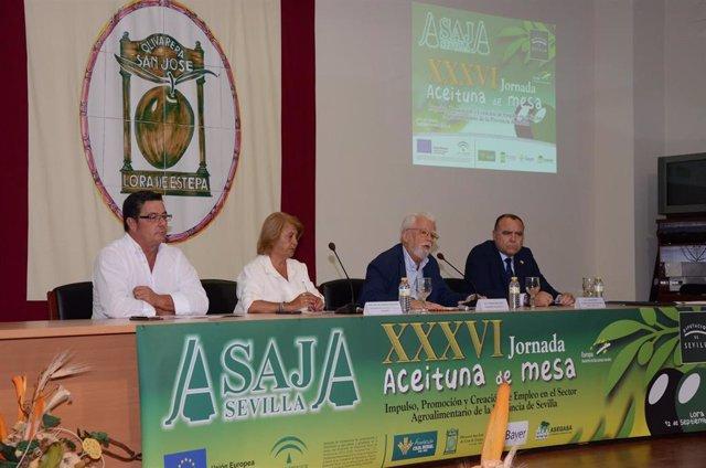 Foto de archivo de unas jornadas sobre la aceituna de mesa de Asaja-Sevilla.