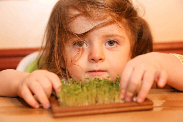 Ofrecer variedad de verduras a los niños es la clave para que estos la acepten,