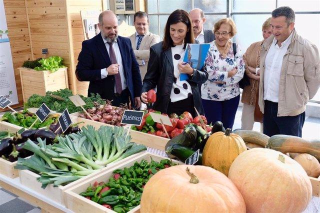 Alcaldesa visita proyecto Ampros en Mercasantander