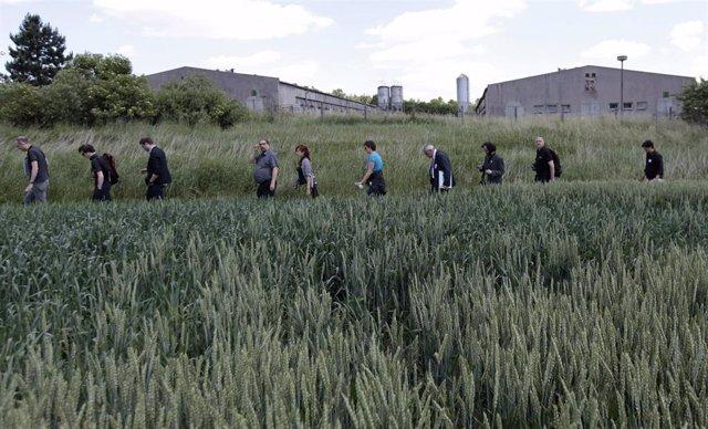 Protesta por la construcción de una granja de cerdos en el lugar del antiguo campo de concentración nazi de Lety