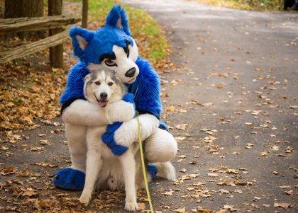 Te retamos a averiguar dónde está el perro en esta foto