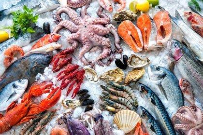 ¿Cuáles son los pescados con mayor contenido en mercurio?