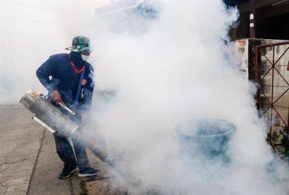 Los casos de dengue aumentan en un 600 por ciento en Brasil en el último año