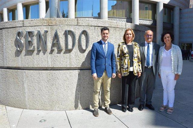 Ha quedado constituido, dentro del Grupo Socialista en el Senado, el Grupo 'Socialistas de La Rioja'.
