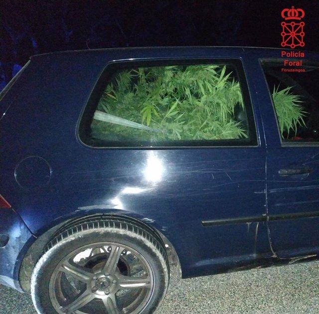Imagen del vehículo que transportaba varias plantas de marihuana