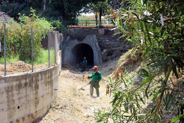 Un operario desbroza el cauce de un arroyo en el municipio malagueño de Estepona