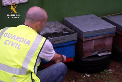 La Guardia Civil auxilia a un conductor que sufrió una reacción alérgica al ser atacado por abejas