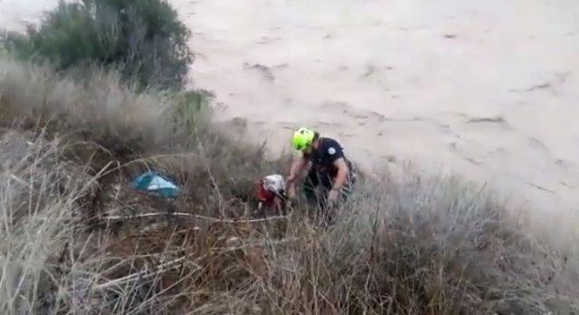 Rescate de un perro en Xàtiva
