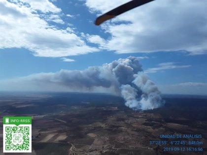 Más de 20 medios aéreos trabajan en la extinción del incendio de Paterna (Huelva) que el viento dificulta