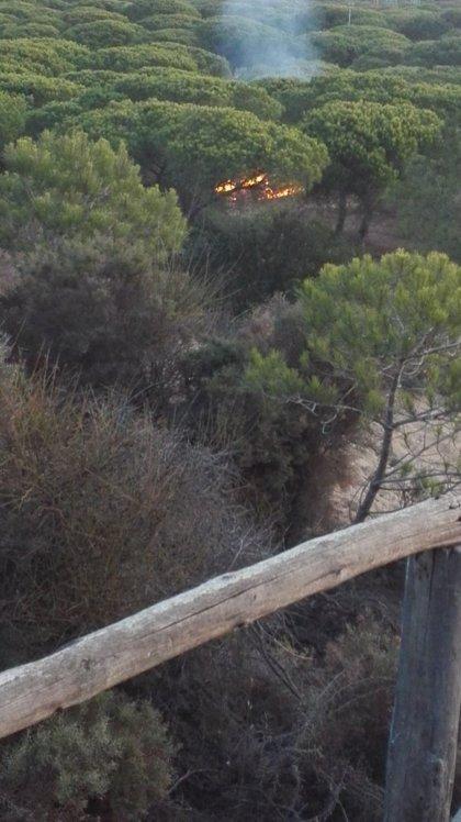 Dos detenidos en Almonte (Huelva) por su presunta relación con un incendio en una zona lindante a Doñana