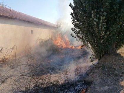 Extinguido un fuego que afectó a maleza y árboles junto al polígono de San Cristóbal en Valladolid