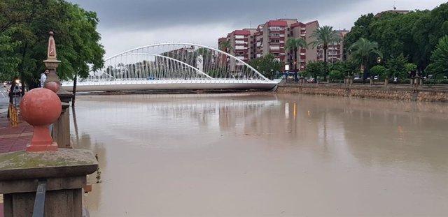 El río Segura a su paso por Murcia