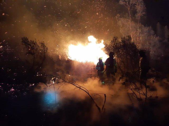 Efectivos del Infoca en el incendio de Paterna del Campo (Huelva)