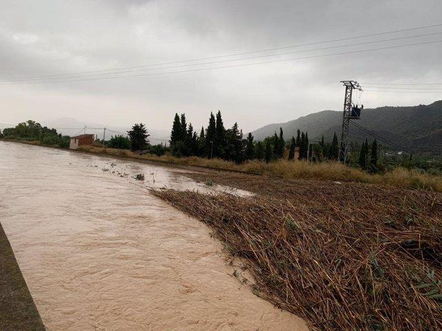 Los servicios de Parques y Jardines y Limpieza Viaria se desplazaron esta mañana al puente del Reguerón en Algezares para recoger cañas arrastradas