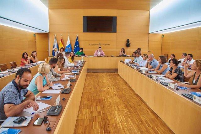 Reunión en el Cabildo con ayuntamientos y entidades ciudadanas